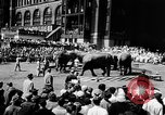 Image of circus show New York City USA, 1957, second 6 stock footage video 65675056223