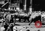 Image of circus show New York City USA, 1957, second 9 stock footage video 65675056223