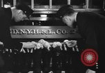 Image of nine mascot pups New York United States USA, 1940, second 9 stock footage video 65675056285