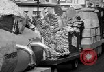 Image of Christmas processions Hollywood Los Angeles California USA, 1947, second 10 stock footage video 65675056297