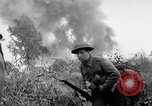 Image of Allies invade Holland Hertogenbosch Netherlands, 1944, second 11 stock footage video 65675056355