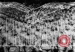 Image of Allies liberate Holland Holland Netherlands, 1944, second 12 stock footage video 65675056370