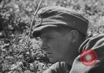 Image of German Army retreats Russia, 1944, second 1 stock footage video 65675056377