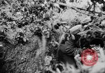 Image of German Army fights United Kingdom, 1944, second 1 stock footage video 65675056380