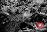 Image of German Army fights United Kingdom, 1944, second 2 stock footage video 65675056380