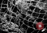 Image of German Army fights United Kingdom, 1944, second 6 stock footage video 65675056380