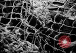 Image of German Army fights United Kingdom, 1944, second 7 stock footage video 65675056380