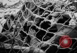 Image of German Army fights United Kingdom, 1944, second 9 stock footage video 65675056380