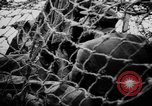 Image of German Army fights United Kingdom, 1944, second 11 stock footage video 65675056380