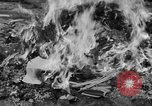 Image of Nazi symbols burnt Cologne Germany, 1945, second 10 stock footage video 65675056426