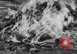 Image of Nazi symbols burnt Cologne Germany, 1945, second 11 stock footage video 65675056426