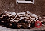 Image of Buchenwald concentration camp Buchenwald Germany, 1945, second 9 stock footage video 65675056448