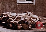 Image of Buchenwald concentration camp Buchenwald Germany, 1945, second 10 stock footage video 65675056448