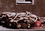 Image of Buchenwald concentration camp Buchenwald Germany, 1945, second 11 stock footage video 65675056448