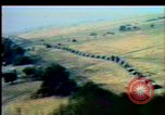 Image of Crisis in Poland Poland, 1982, second 5 stock footage video 65675056613