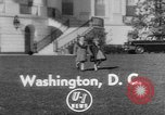 Image of President Eisenhower's grandchildren Washington DC USA, 1953, second 1 stock footage video 65675056670