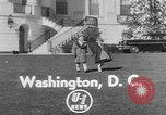 Image of President Eisenhower's grandchildren Washington DC USA, 1953, second 2 stock footage video 65675056670