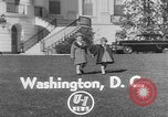 Image of President Eisenhower's grandchildren Washington DC USA, 1953, second 3 stock footage video 65675056670