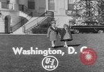 Image of President Eisenhower's grandchildren Washington DC USA, 1953, second 4 stock footage video 65675056670