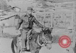 Image of United States Military Mission Shensi China, 1944, second 9 stock footage video 65675056693