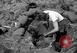 Image of Philippine invasion Philippines, 1945, second 3 stock footage video 65675056731