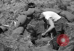 Image of Philippine invasion Philippines, 1945, second 4 stock footage video 65675056731