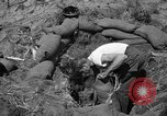 Image of Philippine invasion Philippines, 1945, second 10 stock footage video 65675056731