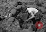 Image of Philippine invasion Philippines, 1945, second 11 stock footage video 65675056731