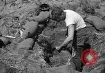 Image of Philippine invasion Philippines, 1945, second 12 stock footage video 65675056731