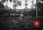 Image of United States Navy Pacific Theater, 1945, second 12 stock footage video 65675056736