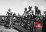 Image of Peleliu Invasion Peleliu Palau Islands, 1944, second 9 stock footage video 65675056743