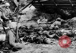 Image of US and enemy soldiers killed in World War 2 Pacific Theater, 1944, second 2 stock footage video 65675056749