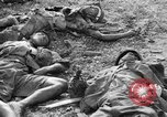 Image of US and enemy soldiers killed in World War 2 Pacific Theater, 1944, second 4 stock footage video 65675056749