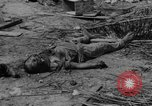 Image of US and enemy soldiers killed in World War 2 Pacific Theater, 1944, second 5 stock footage video 65675056749
