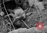 Image of US and enemy soldiers killed in World War 2 Pacific Theater, 1944, second 7 stock footage video 65675056749