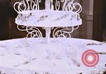 Image of Tricia's wedding cake Washington DC USA, 1971, second 6 stock footage video 65675057001