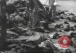 Image of Quartermaster Corps Italy, 1945, second 12 stock footage video 65675057552