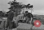 Image of New Zealand supplying food for American soldiers New Zealand, 1945, second 9 stock footage video 65675057553