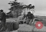 Image of New Zealand supplying food for American soldiers New Zealand, 1945, second 10 stock footage video 65675057553