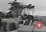 Image of New Zealand supplying food for American soldiers New Zealand, 1945, second 11 stock footage video 65675057553