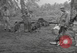 Image of Quartermaster Corps Pacific Theater, 1945, second 9 stock footage video 65675057555