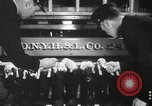 Image of Dalmatian puppies New York United States USA, 1940, second 8 stock footage video 65675057679