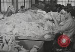 Image of dolls Long Island New York USA, 1940, second 6 stock footage video 65675057681