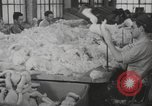 Image of dolls Long Island New York USA, 1940, second 7 stock footage video 65675057681