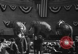 Image of Circus in Central Park New York City USA, 1937, second 12 stock footage video 65675057739