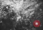 Image of American soldiers Panama, 1942, second 9 stock footage video 65675057756