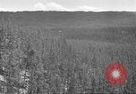 Image of lumbering Idaho United States USA, 1942, second 3 stock footage video 65675057904
