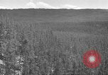 Image of lumbering Idaho United States USA, 1942, second 7 stock footage video 65675057904