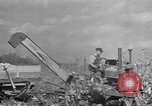 Image of corn industry Midwest United States USA, 1942, second 2 stock footage video 65675057910