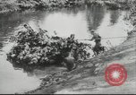 Image of Francisco Franco Spain, 1943, second 8 stock footage video 65675057917